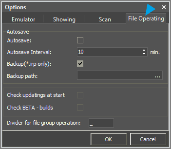 Editor Tools Option File Operating.png